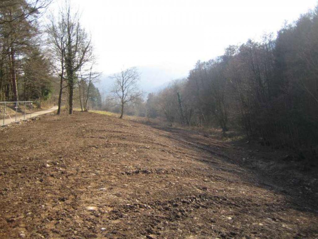 Réhabilitation du vallon du Toggenbach.