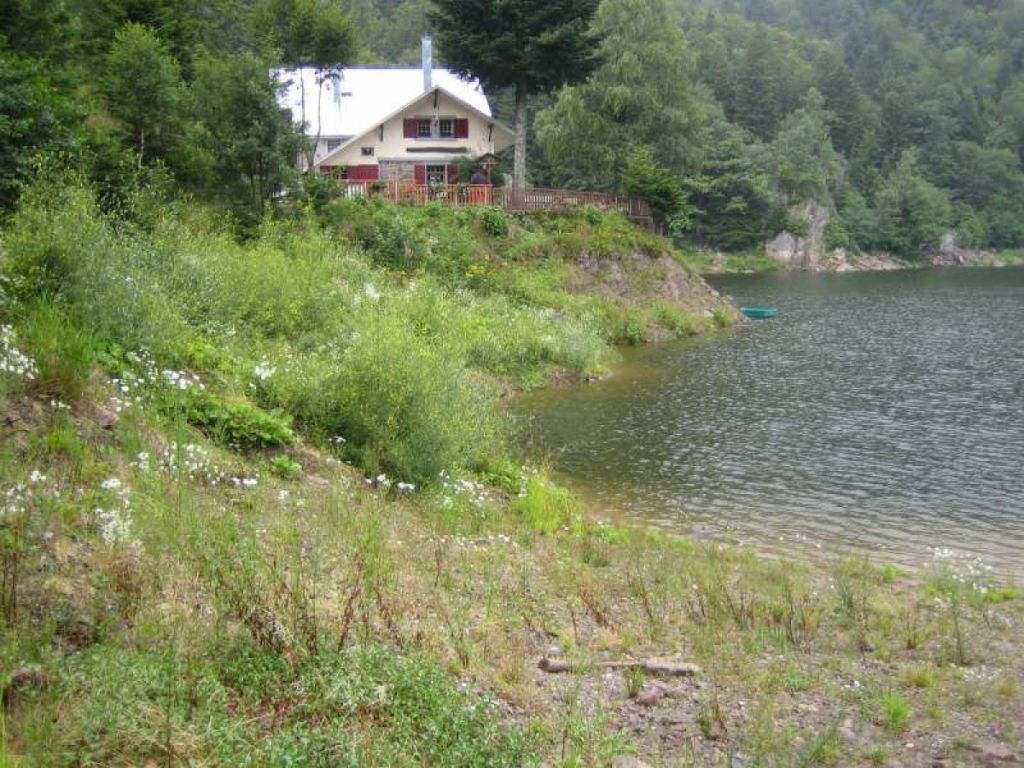 Réaménagement des berges du Lac du Neuweiher.