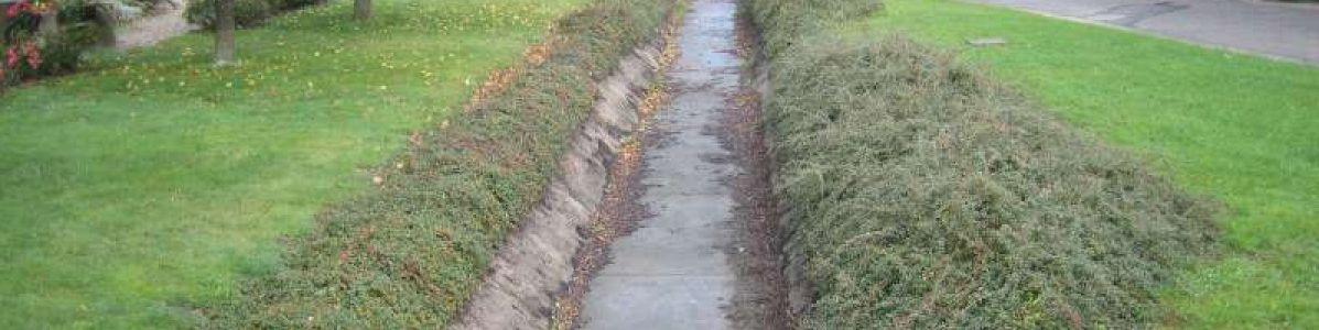 Renaturation d'un ruisseau en Meurthe et Moselle