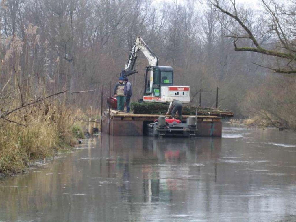Revitalisation du Taubergiessen (ancien bras du Rhin).