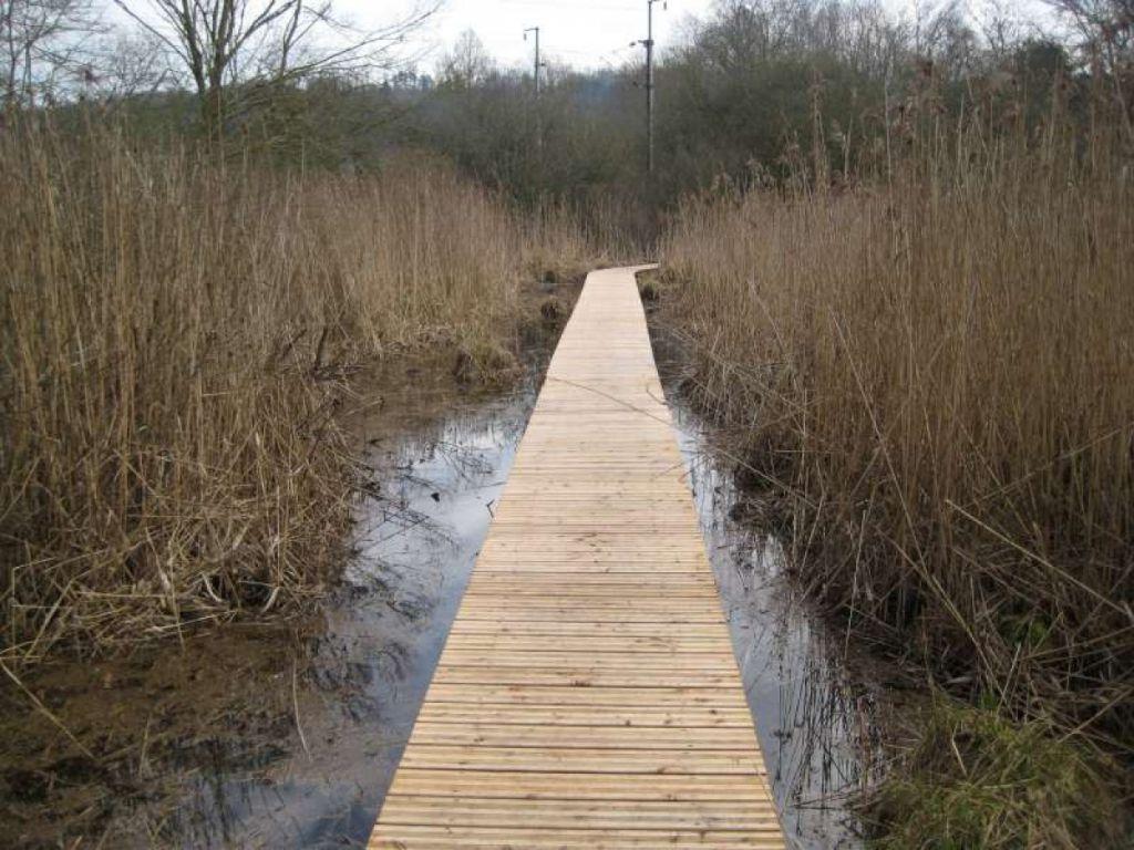Réalisation d'un sentier pédagogique sur un marais à lay saint rémy