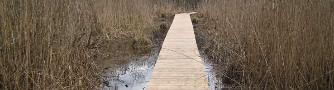 Réalisation d'un sentier pédagogique sur un marais